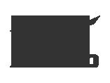 Mizuno-logo-wordmark01
